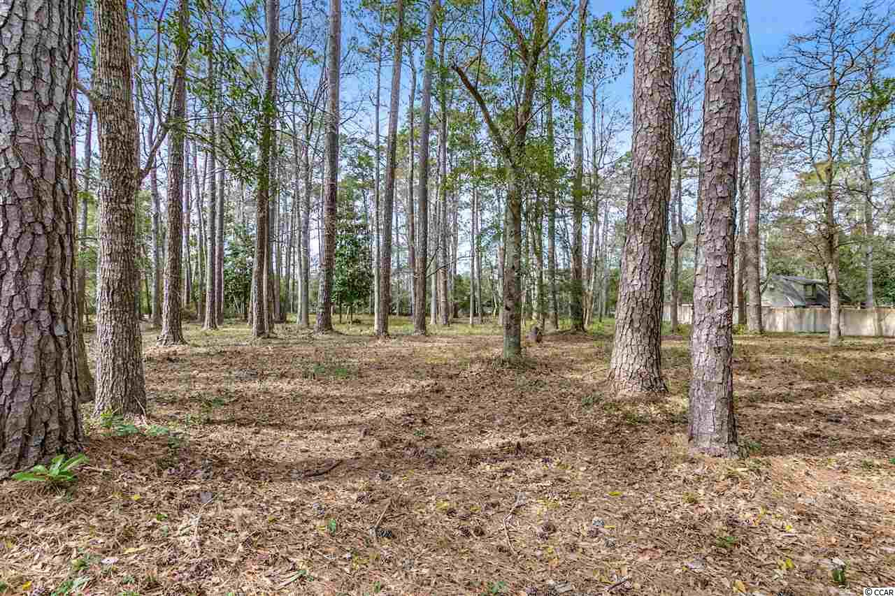 This is your opportunity to build on the lowest priced lot in Briarcliffe Acres which is truly one of Myrtle Beach's best kept secrets.  This one acre lot is east of Business 17 and located just a short golf cart ride to the blue Atlantic where members can enjoy access to the private cabana and pristine beach.  Also located just minutes to Barefoot Landing, golf, restaurants, shopping, and everything else the Grand Strand has to offer.   All information is deemed reliable but not guaranteed. Buyer is responsible for verification.