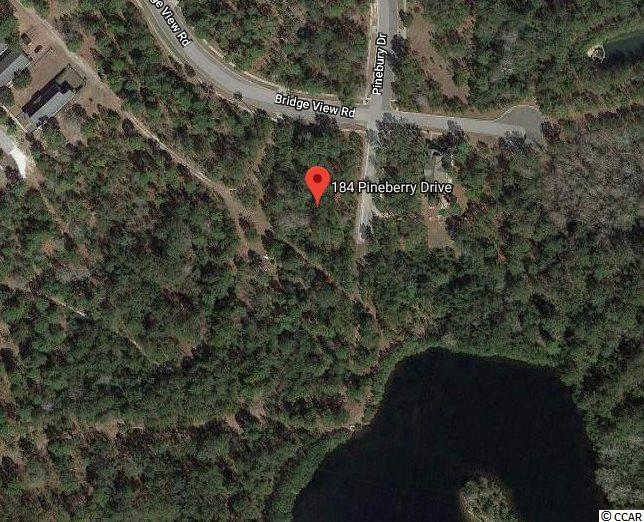 Heres your chance to own a corner lot in the beautiful community of Harmony Township! You can build your dream home with access to Friendfield Marina located on the Sampit River. No time frame to build! Buyers agent is responsible for all measurements.