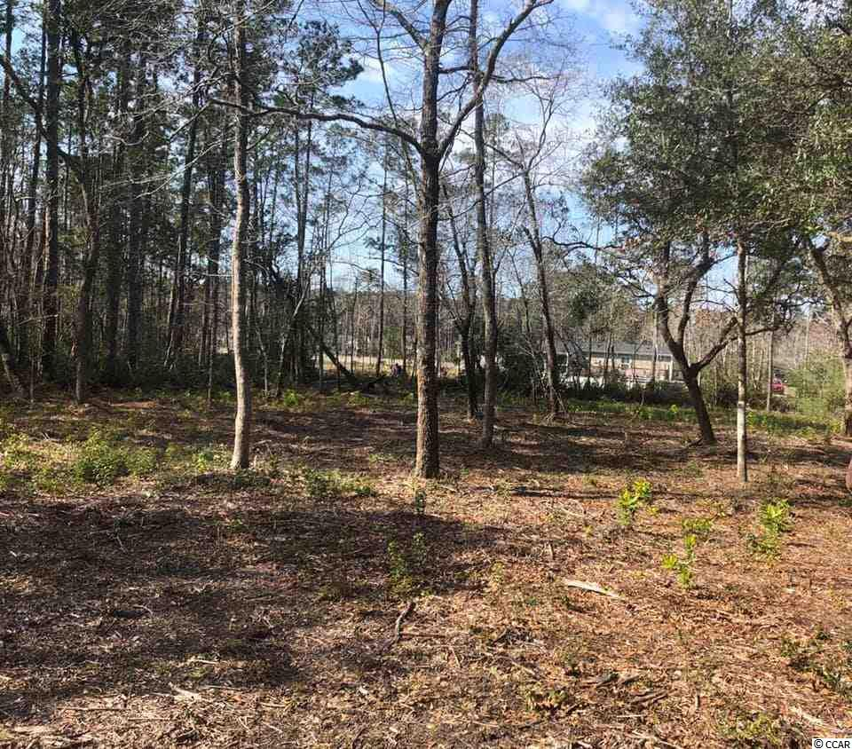 Come build your dream home in this NO HOA community in the heart of Little River! Nice oversized lot (+/- 0.43 Acres) in a beautiful community surrounded by other custom built homes. Centrally located to many Waterway Restaurants, Bars, Casino Boat, Golf Courses, Putt Putt and more! Partially cleared, and ready to build! No Mobile Homes Allowed. RV, Golf Cart, Motorcycles allowed. Ask agent about water/sewer tap fee cost for build. Water/sewer hookup can be obtained through Little River Water and Sewer. Price reduced to help cover that fee. Seller is licensed SC Realtor.