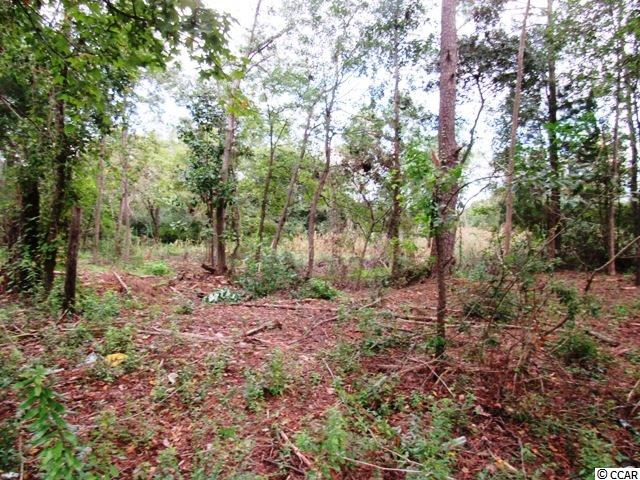 0.5 Acreage with No HOA! What a beautiful area to Build your dream home, close to everything in Murrells Inlet, area shopping, hospital, boat landings, etc. Call your Agent Today to Schedule a Showing! Must Come Visit!