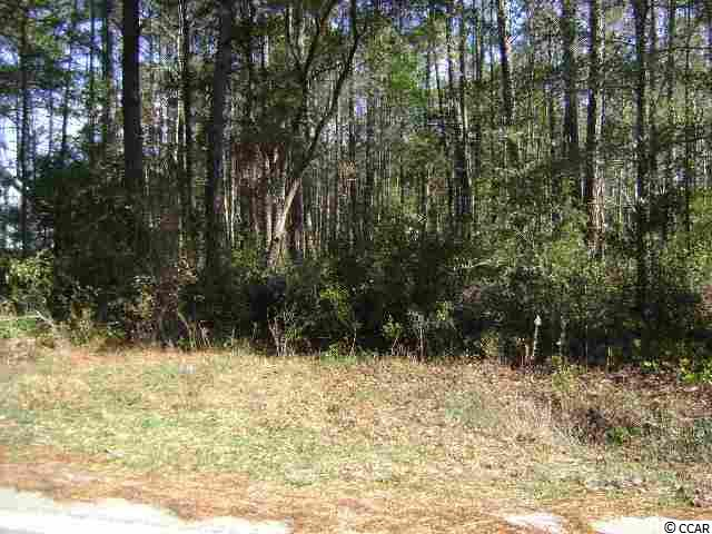 Homesite overlooking Founders Golf Course in Hagley Estates. Only a short drive to Hagley Boat Landing on the Intracoastal Waterway and only minutes to Pawleys Island Beaches, Huntington Beach State Park, short drive to Charleston, SC. Great Lot. No Time Frame to Build.