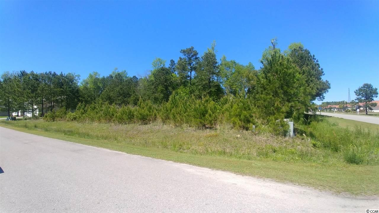 .66 acres in the Stone's Edge Subdivision with NO HOA. This is a corner lot with many possibilities. Zoning should allow more than one home to be built on the lot. The property has underground utilities including public water and sewer.