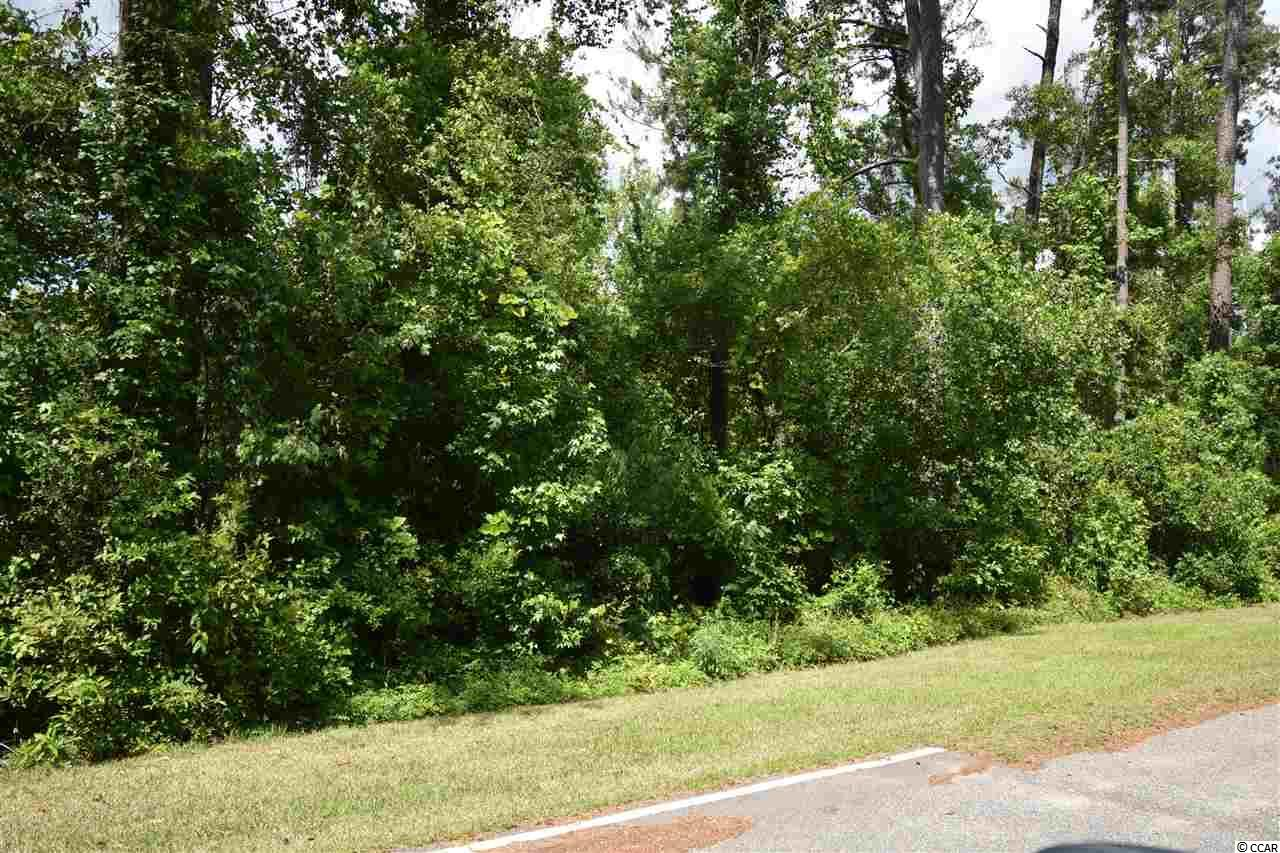 Perfect home site conveniently located in Conway with short drive to the beach!  All measurements to be verified by the buyer.