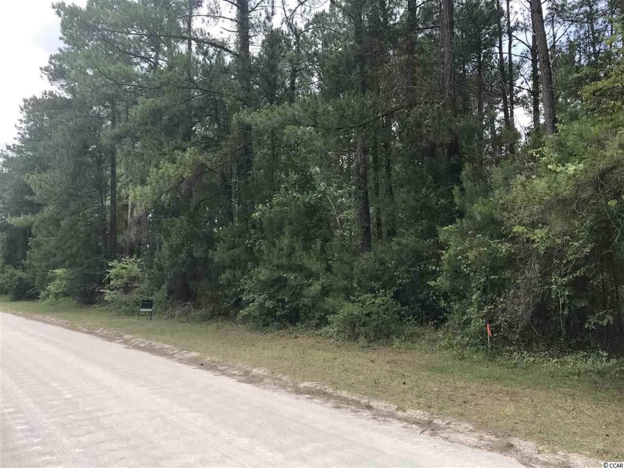 This is your chance to own a piece of land in the great Conway area! This wooded lot is located on Hucks Rd. and is a whopping 0.77 acres! Perfect size to fit just about any house or manufactured home you can build. Schedule your appointment today!