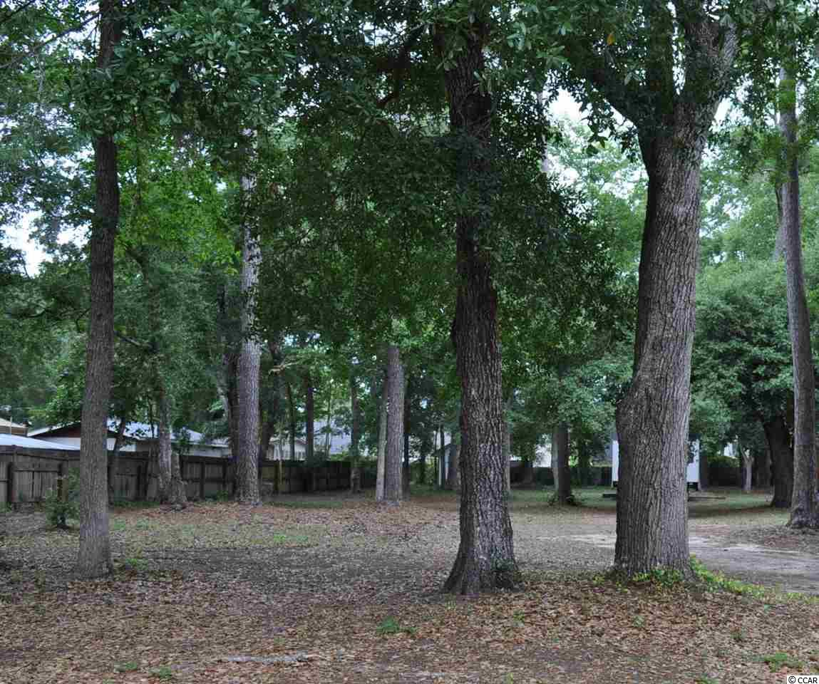 Nice lot minutes from everything in Murrells Inlet.  Property is zoned General Residential. Garage/workshop on rear of lot.  Buyer to verify all information.