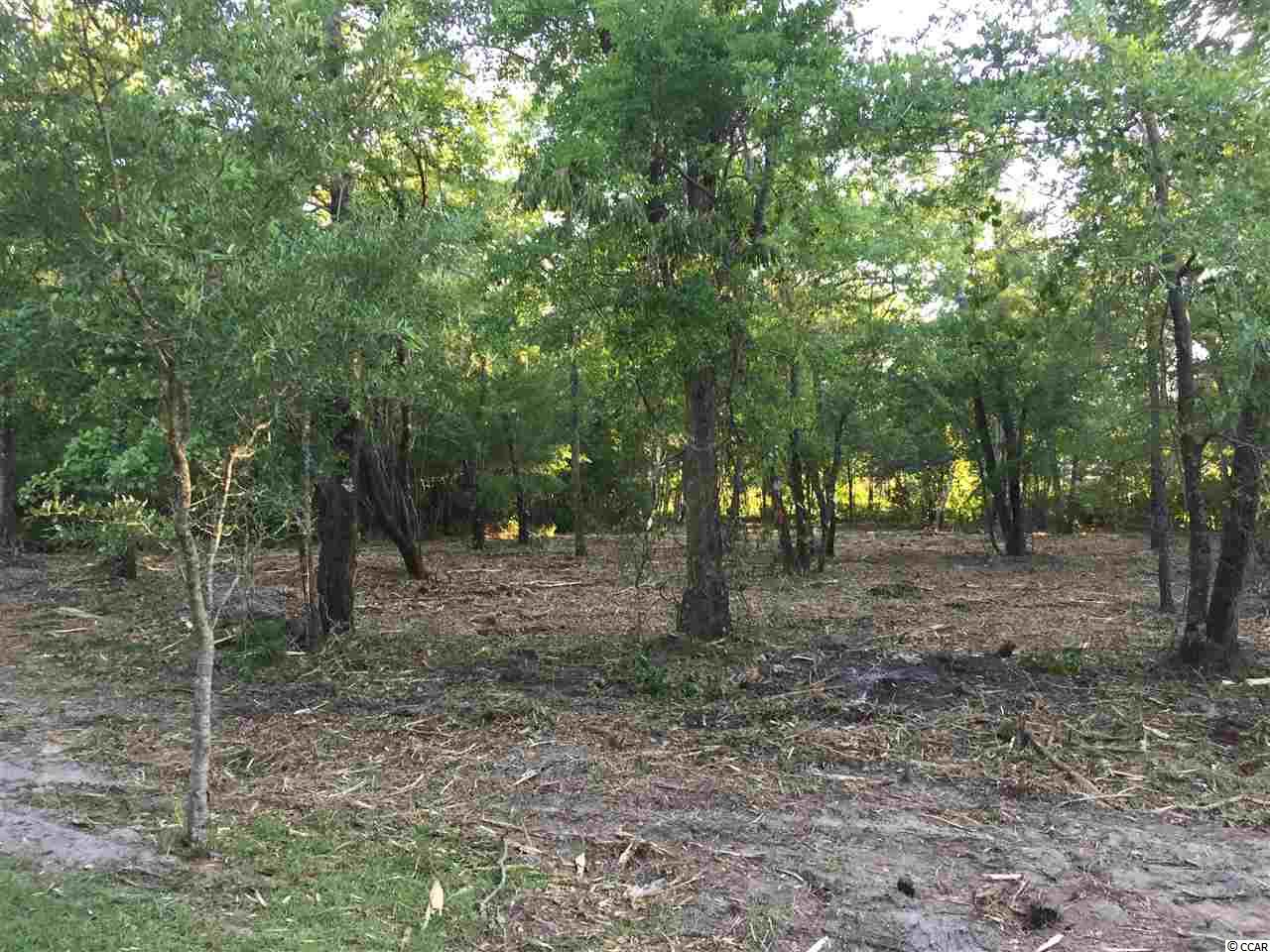 This 1/2 lot is minutes away from the beaches, restaurants, malls, outlets and Ball fields. Very few trees to be removed before building.
