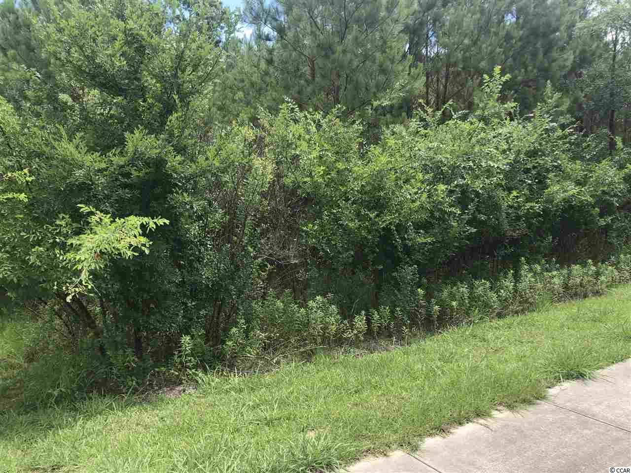 Lot 13 offering 236 frontage feet on 17th ave S This lot offers significant road frontage with great visibility and good  access due to its location at the entrance of 17th ave s and Dividend Loop. Water and sewer available. Owner Financing Available.!
