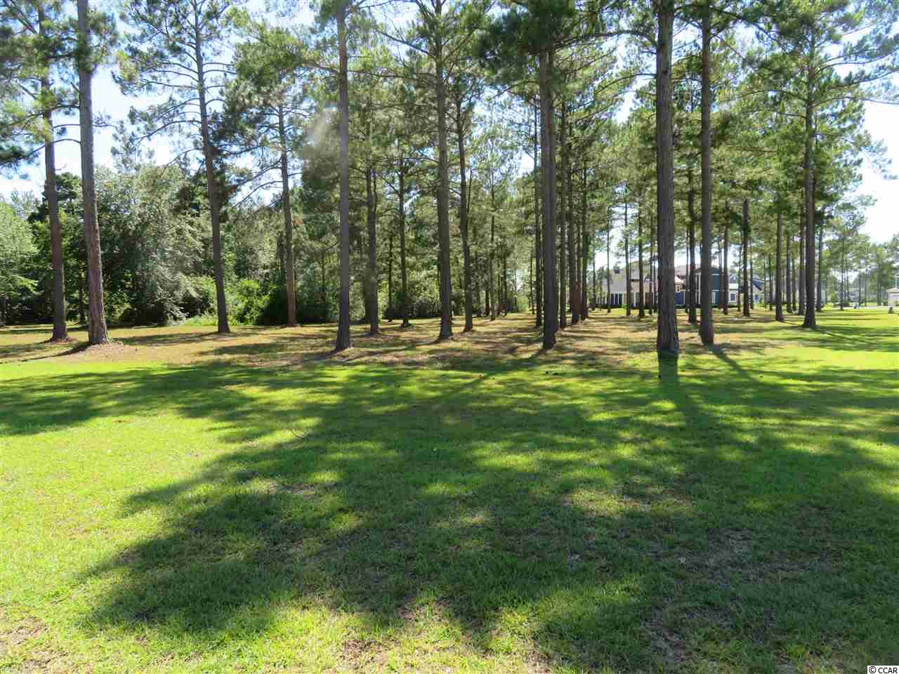 Buy and build on this corner lot in Waterbridge.  Very close to the amenities center and clubhouse.  Build your custom dream home.