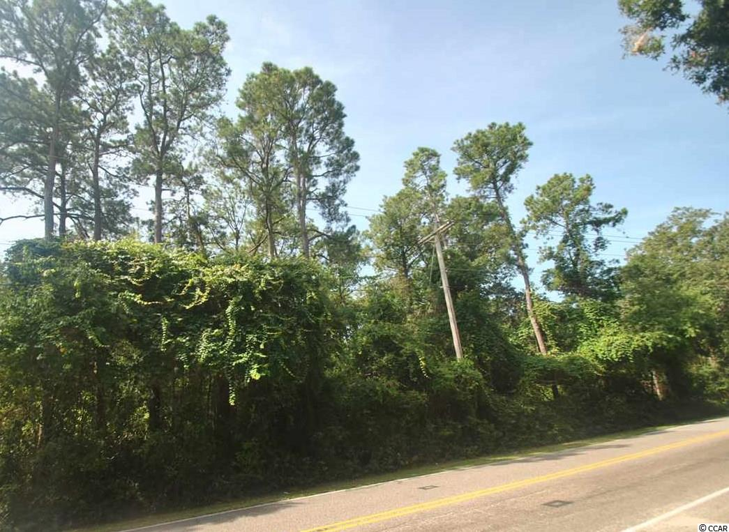 Excellent Building lot close to the beach. over a 1/4 acre. This lot is located outside of the designated flood zone. Buy now, build later. an easy golf cart ride to Main Street