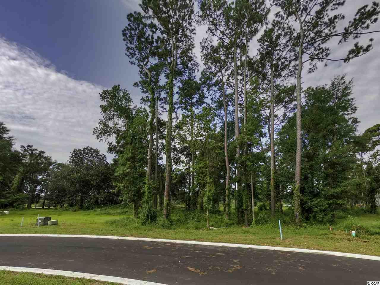 Here is your opportunity to build the home of your dreams in the well established gated golf course community of Pawleys Plantation. The course that Jack Nicklaus built. The ability to bring your own builder in with no time frame to start construction gives anyone looking to build their next home all the flexibility they will need. Also we do have a few approved homes plans that you may use. We have lots available on the 18th fairway, some with views of Pawleys Creek & Pawleys Island. The others back up to Masters Place Villas. Plenty of options from which to choose. Please feel free to call for more info and private showings of all the lots we have. Twenty two as of today. Pawleys Plantation is only minutes to fine dining and shopping. Pawleys Island Beaches are also just a few minutes away. Pawleys Plantation has 24-hour security, not that you need it. Residents can join the country club, which offers access to a Jack Nicklaus Signature golf course, pool, tennis, fitness facility and dining. Ask us for more info on the social or full memberships that are available. If you have a boat the Hagley Landing is just minutes away or you can check out availability at one of the local marinas. Historic Georgetown is just a quick 15 minute ride to enjoy that area. Charleston is about an hour and a half away. To fly out or in, Myrtle Beach is 45 minutes north & Charleston airport about an hour south. There are also eight other great golf courses close by here in Pawleys Island. Your family deserves this opportunity to own a small piece of heaven. Relax we'll take it from here.®