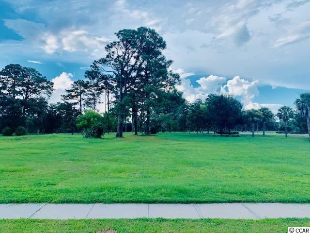 South Island Plantation...A gated community located along Winyah Bay and the Intracoastal Waterway, near Historic Georgetown, SC. Community amenities include a pool, kiddie pool and hot tub. There is also a 5000 sq ft club house with an equipped fitness center, a bar and a full kitchen. Walking trails wind throughout the community with gazebos for periodic resting. A secured RV/ Boat storage area is available for property owners. Build your dream home today....