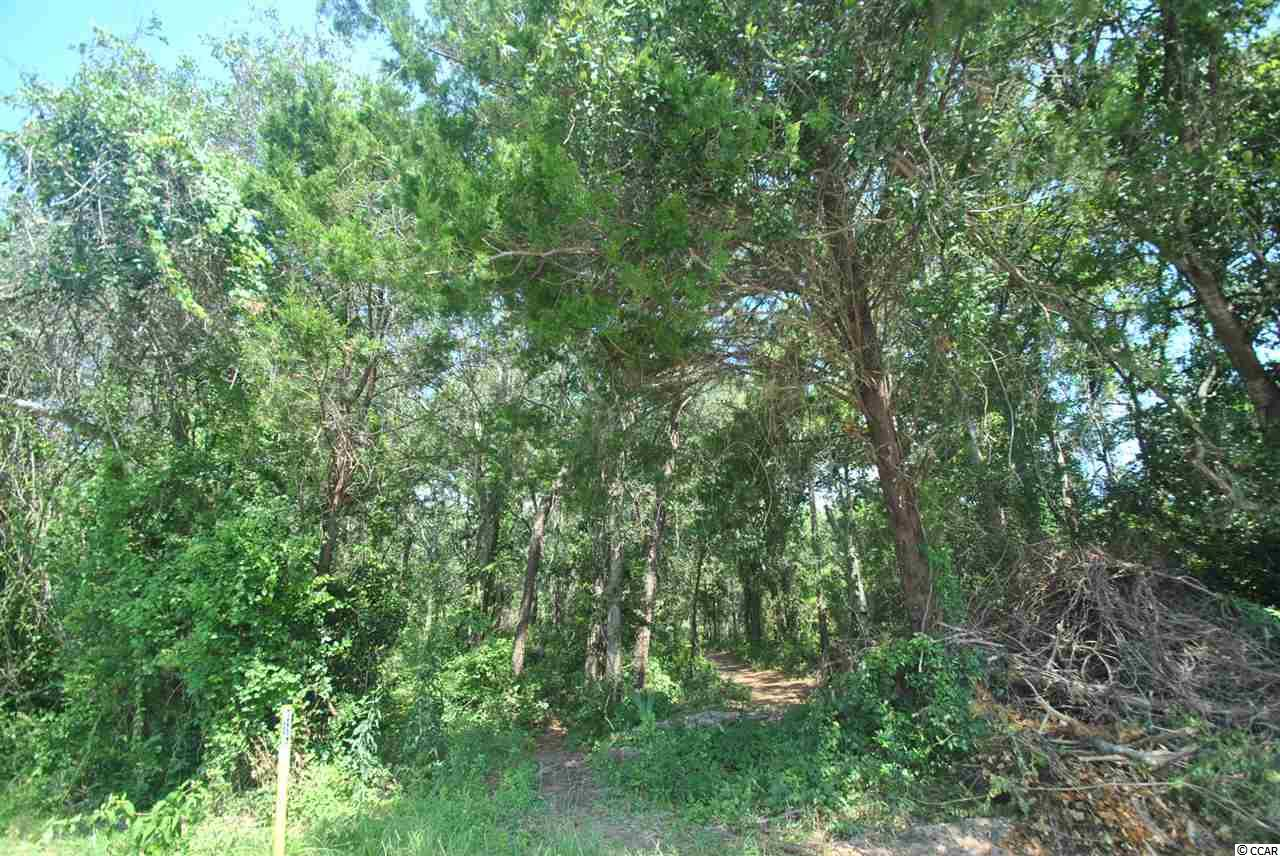 this huge single family homesite in North Myrtle Beach is over 17,000 sqft! This property backs up to a 7+ acre conservation area and may have an ocean view. This is a true estate lot. This is NOT in a  designated flood zone. Buy now, build later