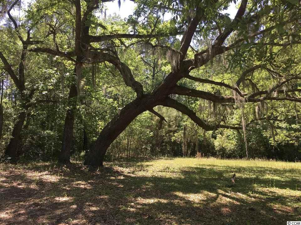 Nearly 2 acres of land in residential area with NO HOA.  Great location for all Pawleys Island has to offer.  Only minutes to the beach, shopping and dining.  Beautiful historic live oak on this property.  Come and build your Dream Home!