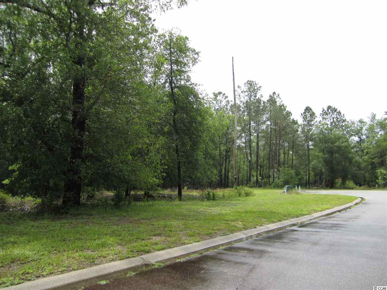 349 Cypress Flat Ct. Conway, SC 29526