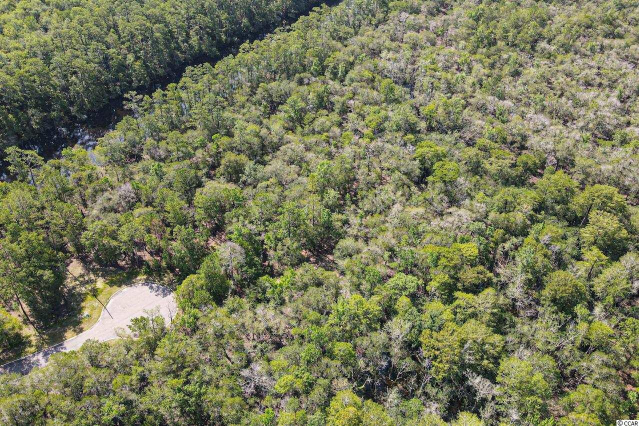 Lot 16 Black Water Cove Conway, SC 29526