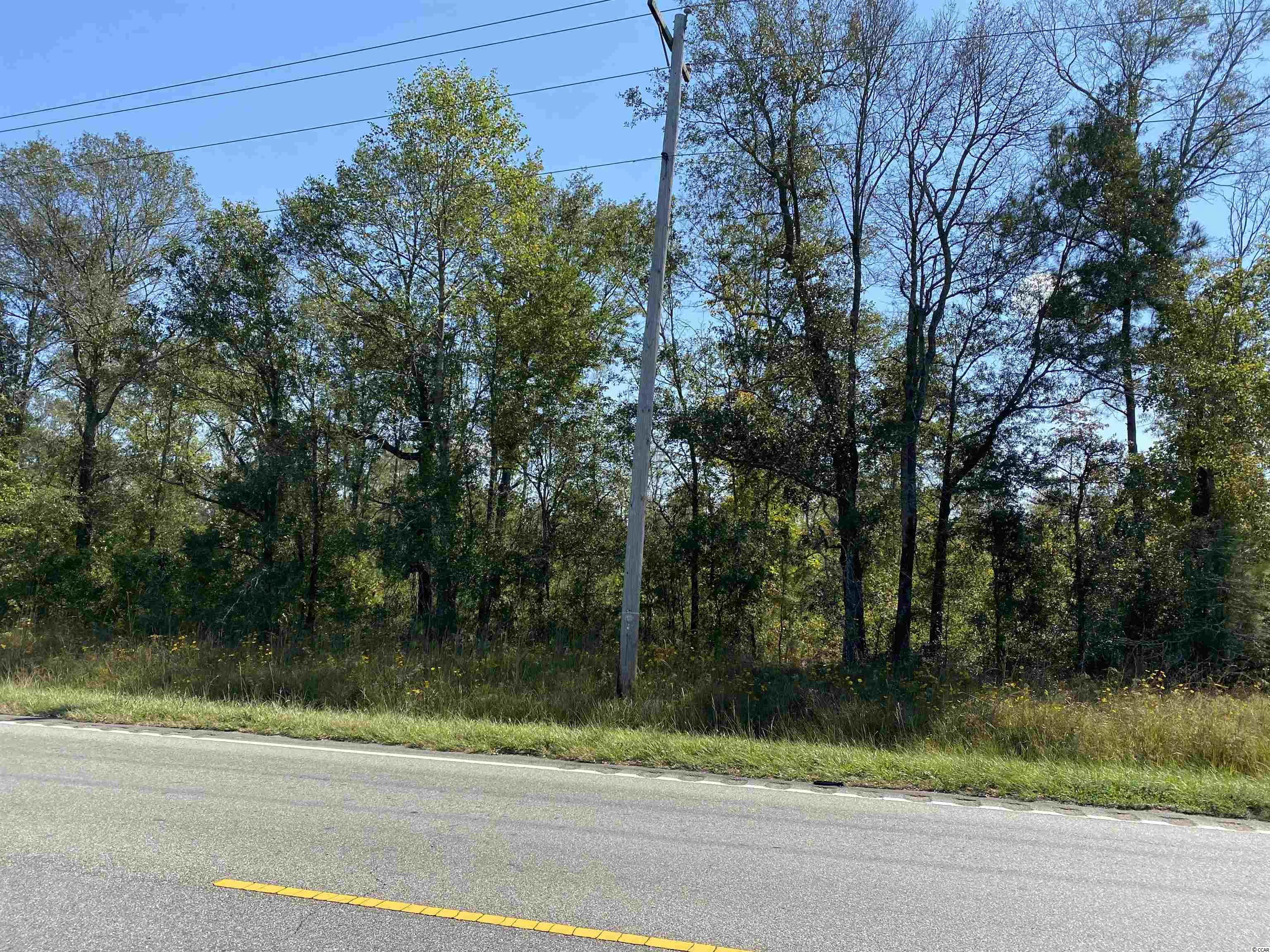 TBD Highway 701 South Conway, SC 29527