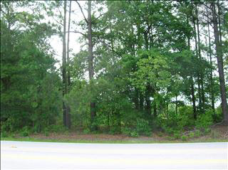 1407 Chestnut #Lot #3 Elgin, SC 29045