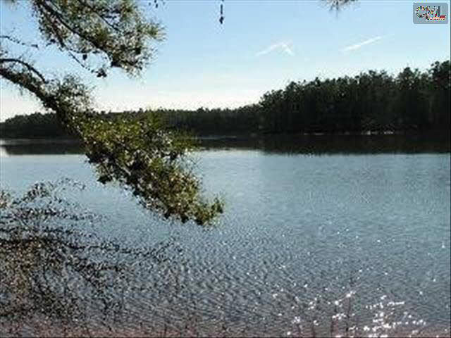 Windjammer #lot #5 Blair, SC 29015