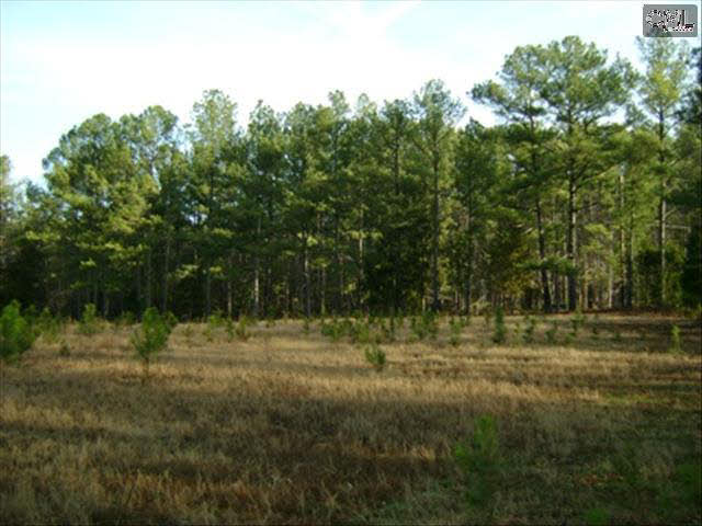 Crooked Pine #8 Elgin, SC 29045