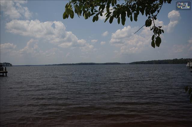 440  Lake Estate #64 Chapin, SC 29036