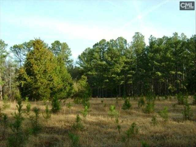 4  Bethel Campground #lot 4 Elgin, SC 29045