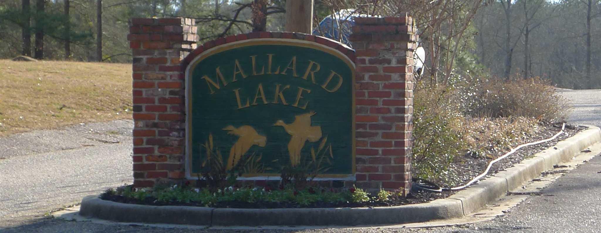 170  Lake Mallard Camden, SC 29020