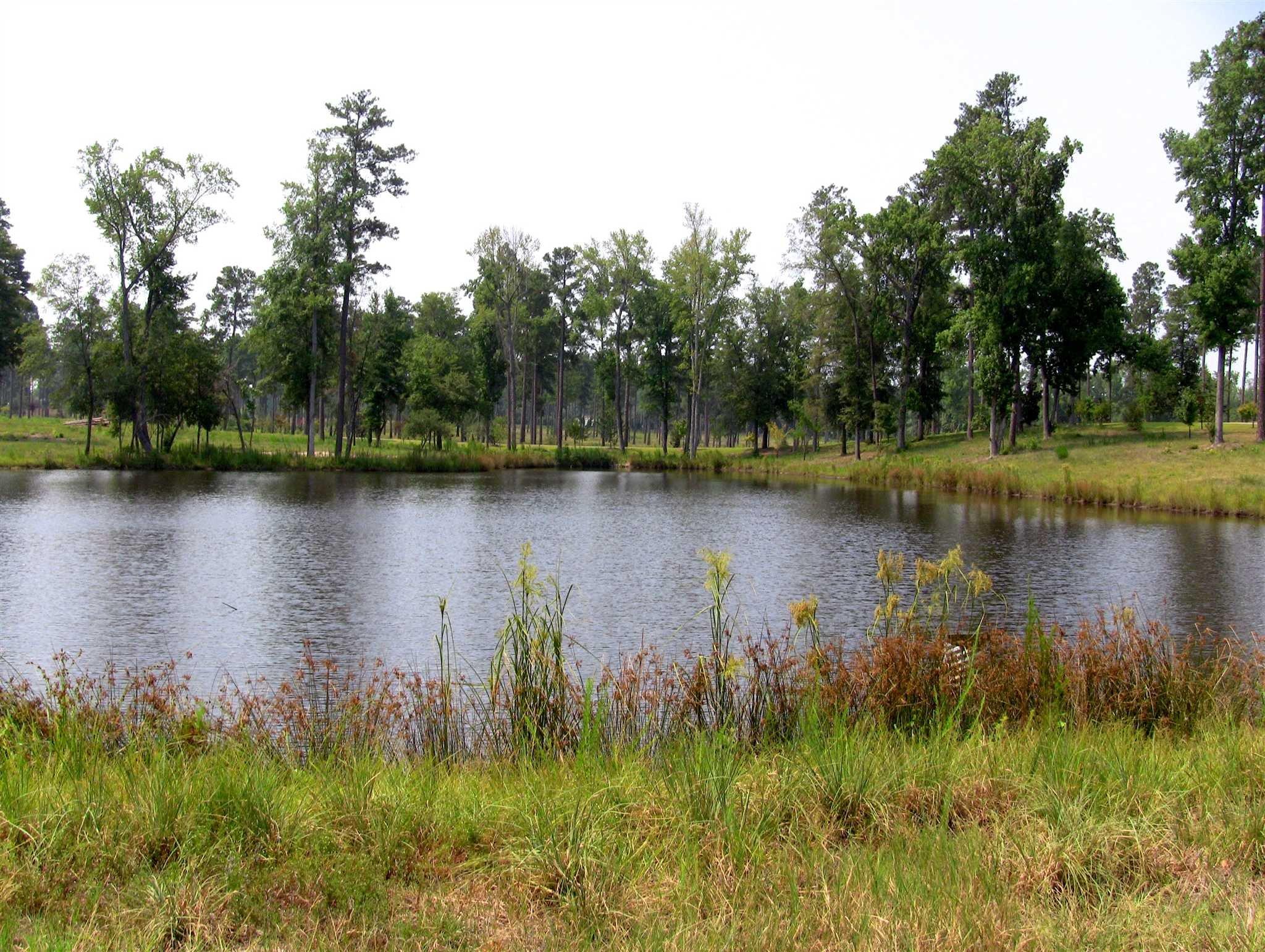 540  Swift Creek Boykin, SC 29128