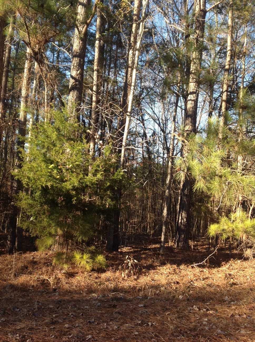 Kingswood #71 Winnsboro, SC 29180
