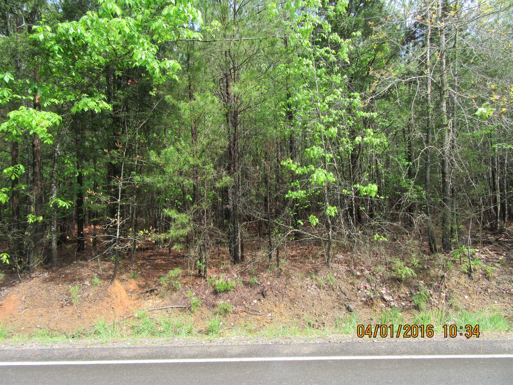 Pebble Branch Chapin, SC 29036