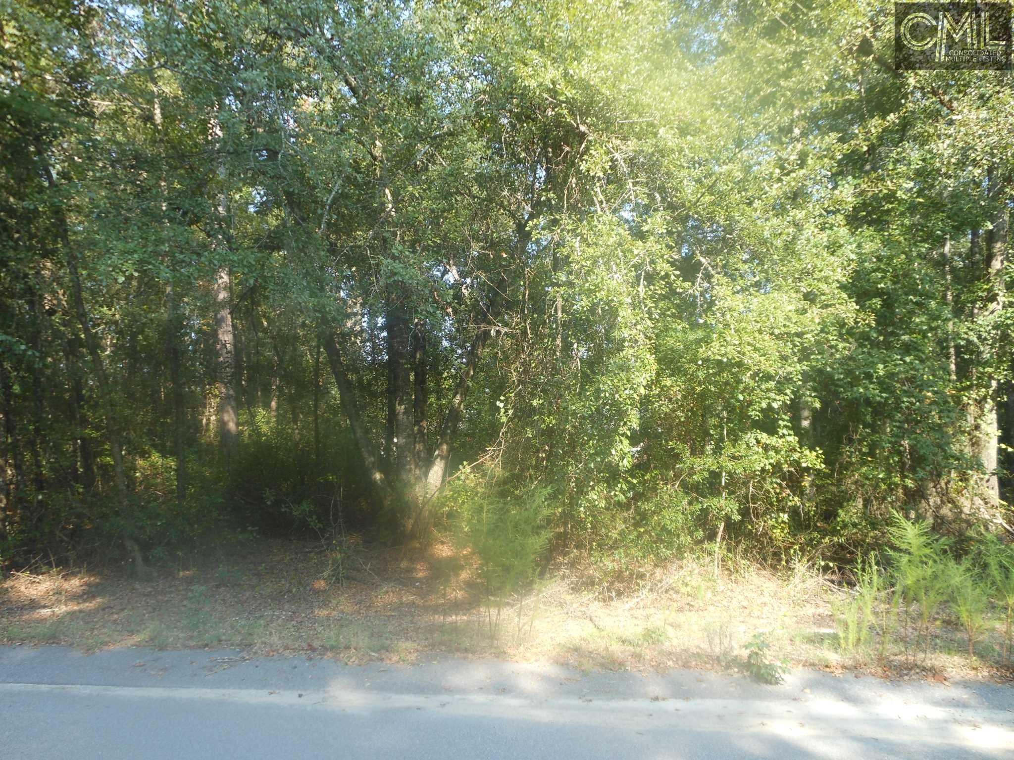543  Orange Parish Orangeburg, SC 29115