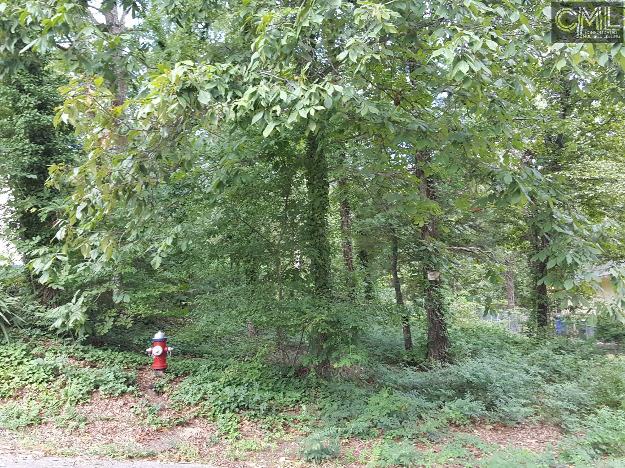 1217  Woodlawn Columbia, SC 29209