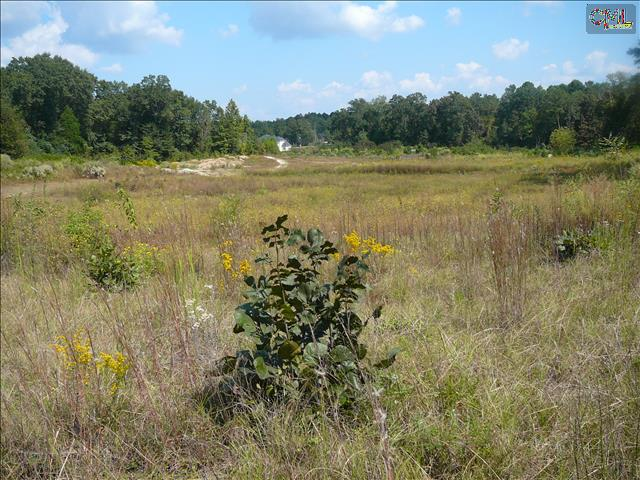 1694 Highway 1 S #Tract 3 Lugoff, SC 29078