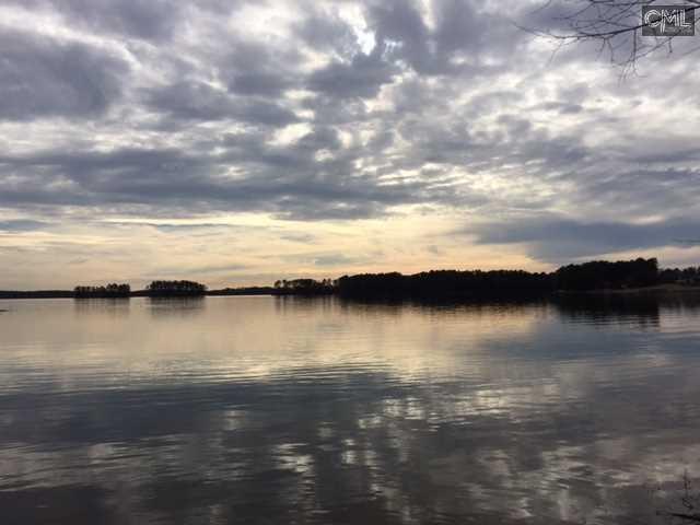 319  Osprey Lake Chapin, SC 29036