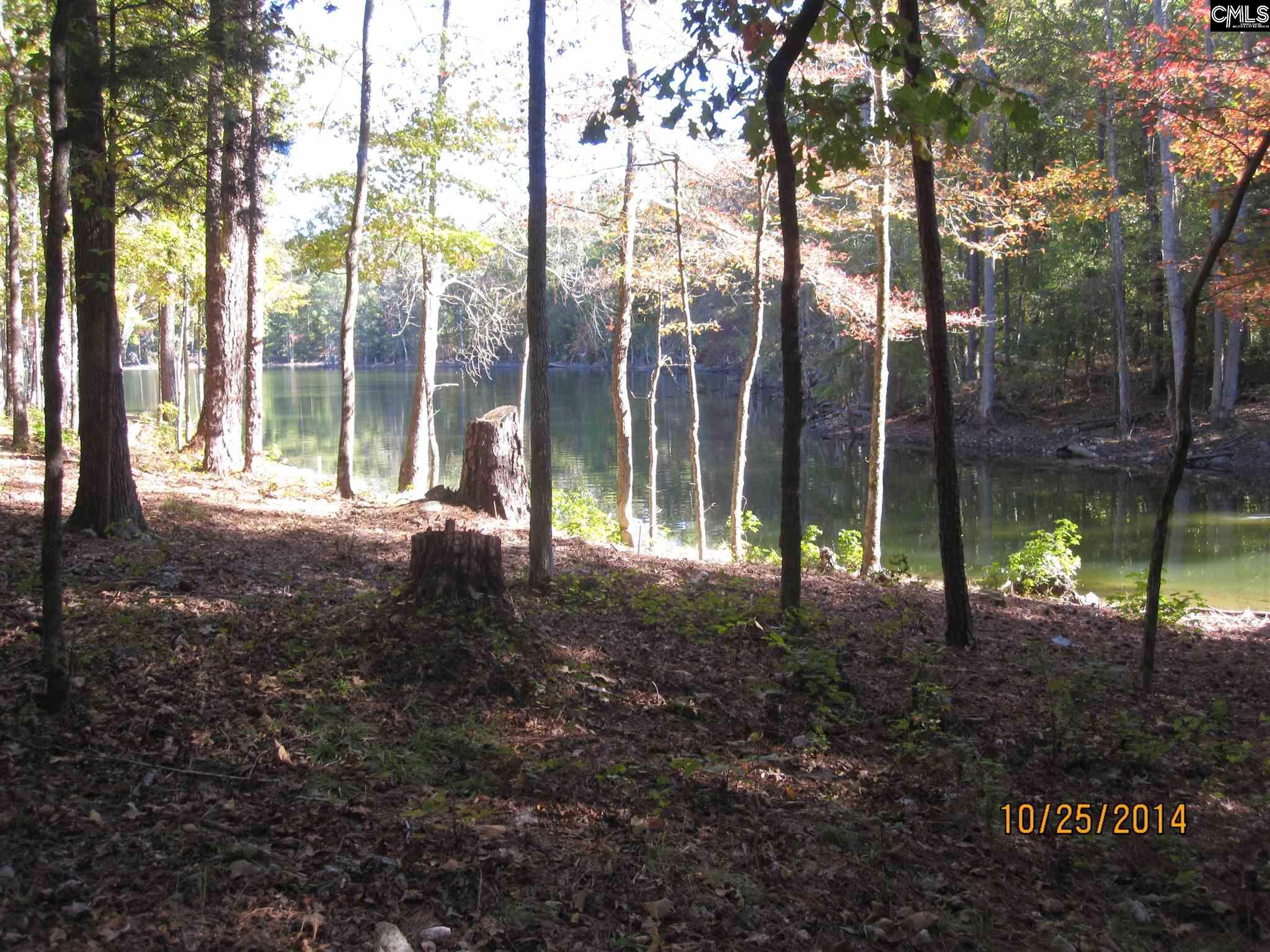 120 Serenity Pointe Lot #38 #38 Leesville, SC 29070