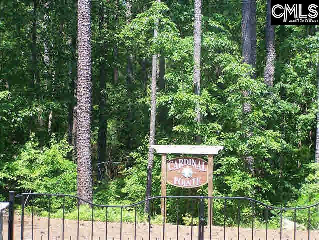 State Highway 215 Jenkinsville, SC 29065