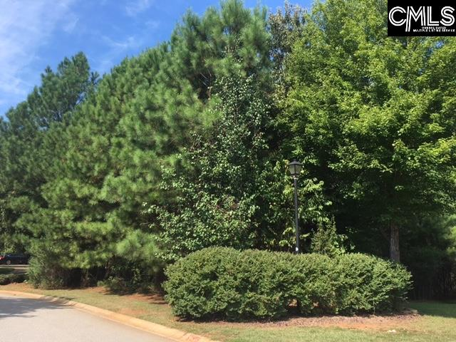 209  Pointe Overlook Chapin, SC 29036