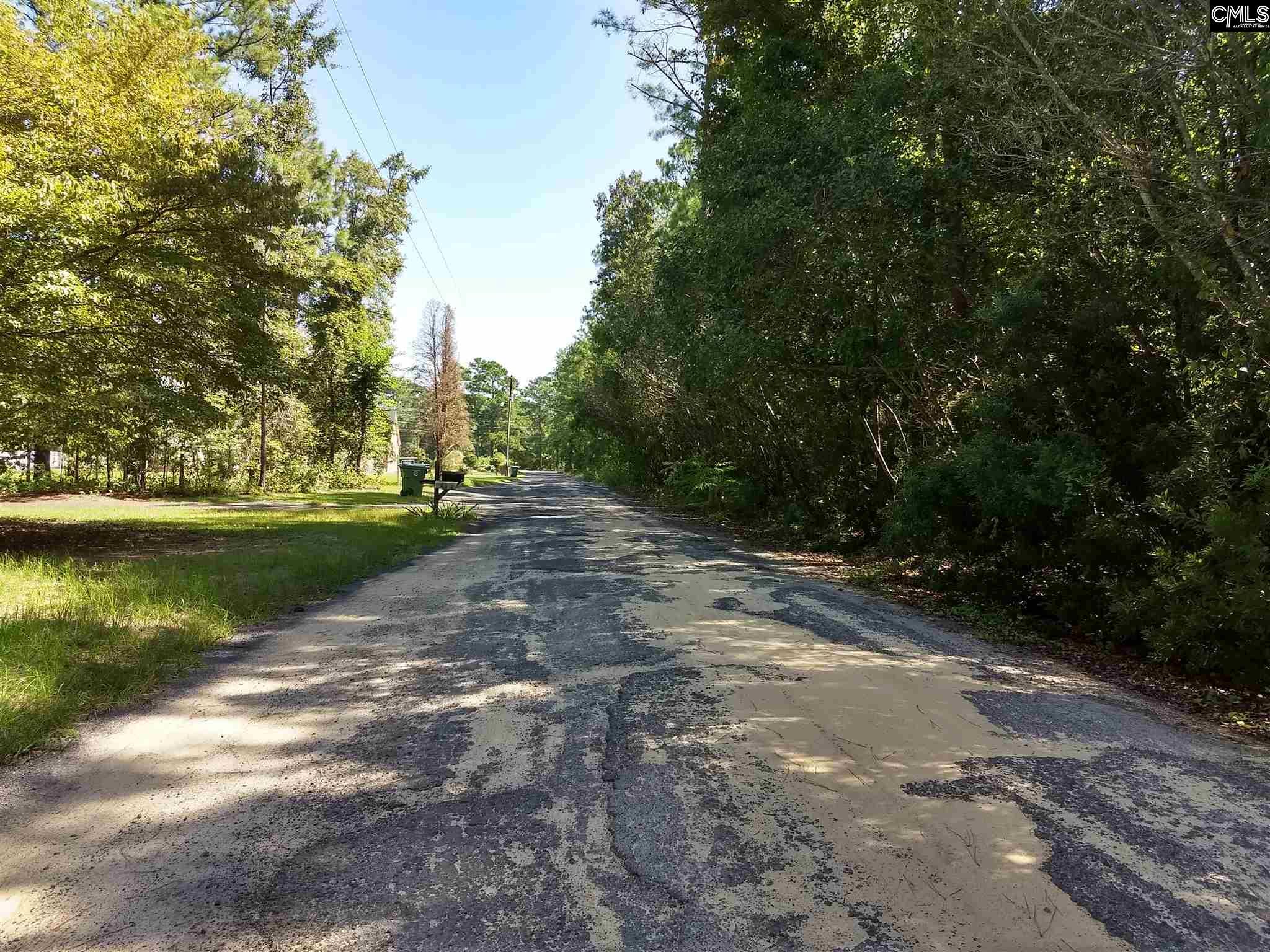106 Rice Creek Lane Blythewood, SC 29016