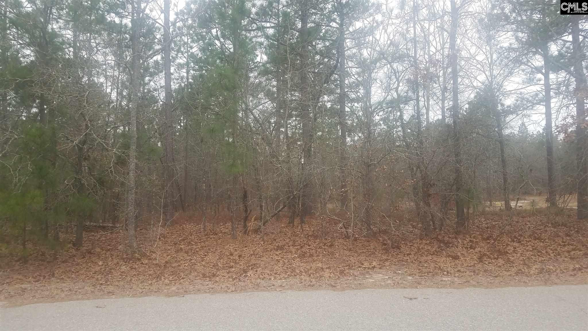 6  Misty Glen Orangeburg, SC 29118