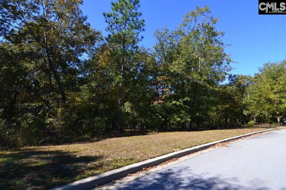 121 Montgomery Ridge #4 Blythewood, SC 29016