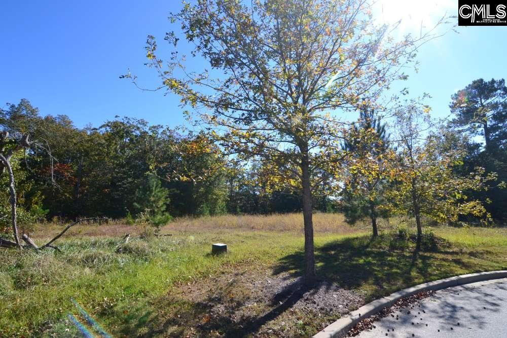 6 Blythe View #14 Blythewood, SC 29016