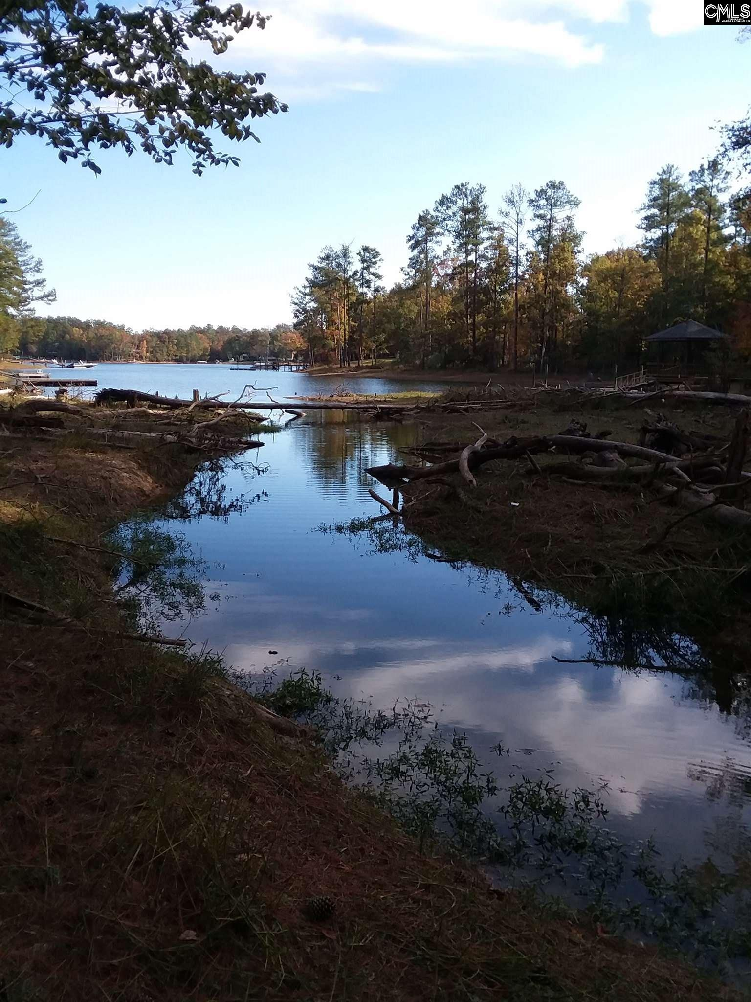 Indian Creek #tract 4 Chapin, SC 29036