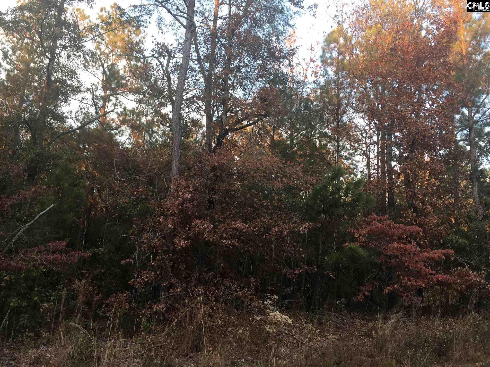 Lake Dogwood Eastover, SC 29044