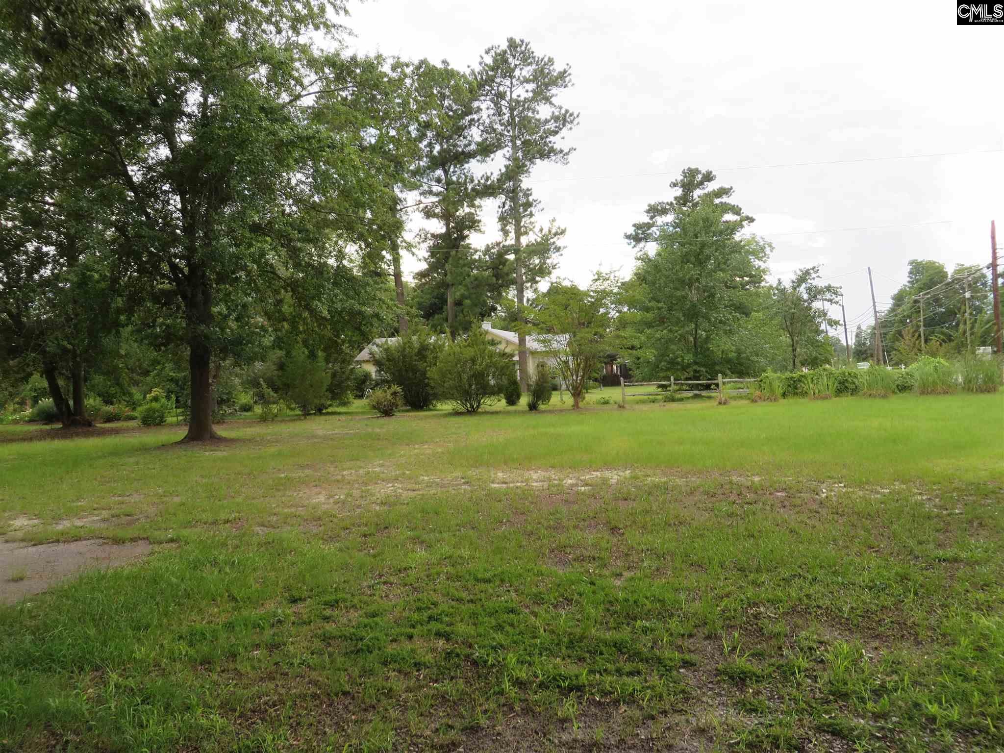 232 E Columbia Leesville, SC 29070