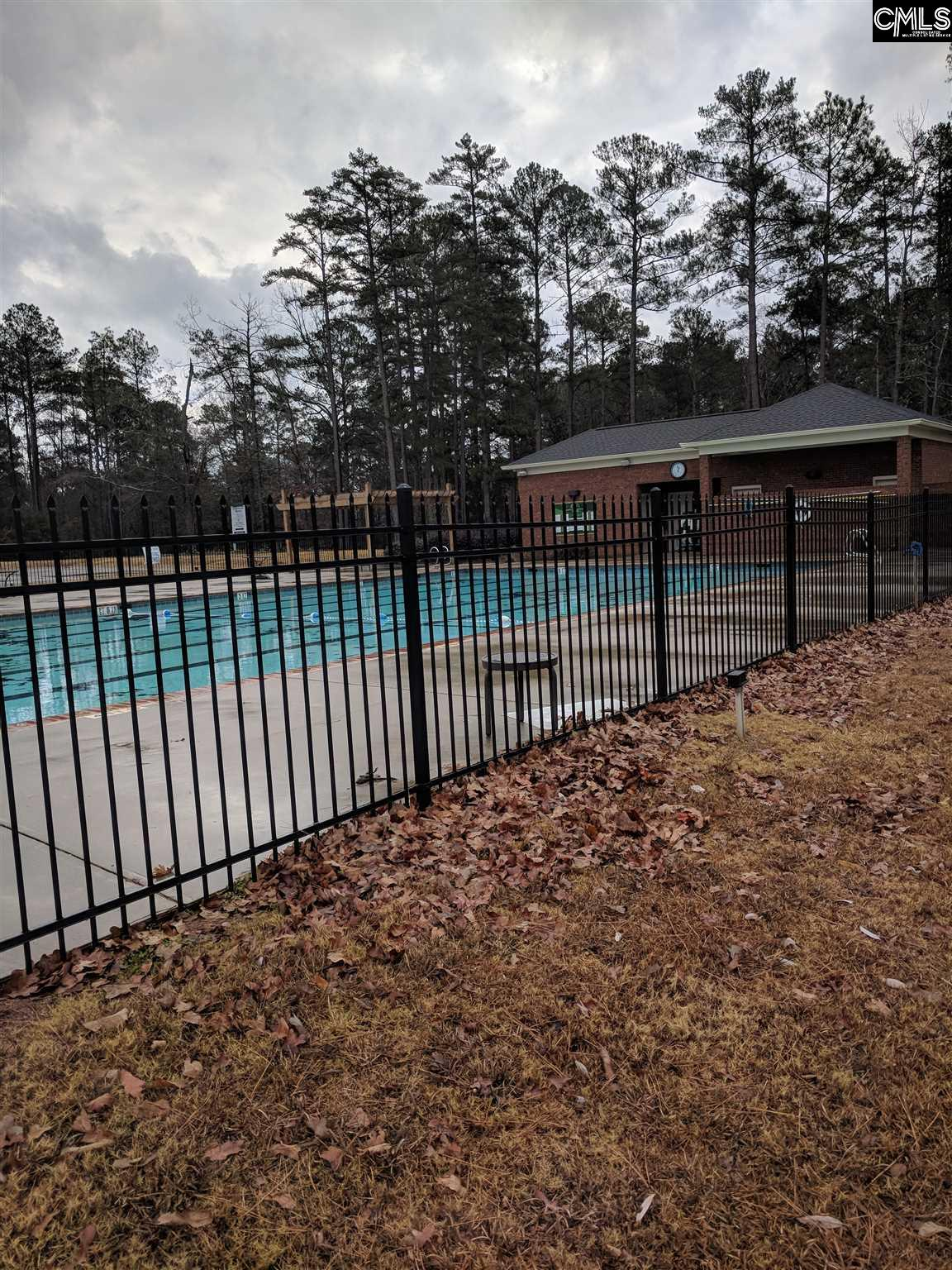 428  Lookover Pointe Drive Chapin, SC 29036