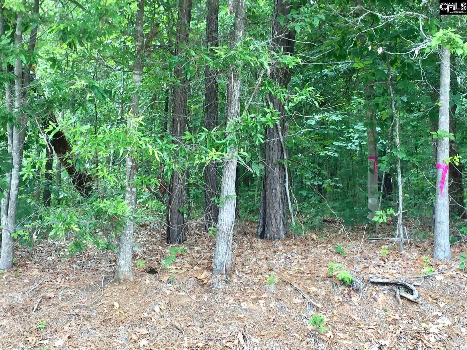 334  Horse Creek #LOT3 Leesville, SC 29070