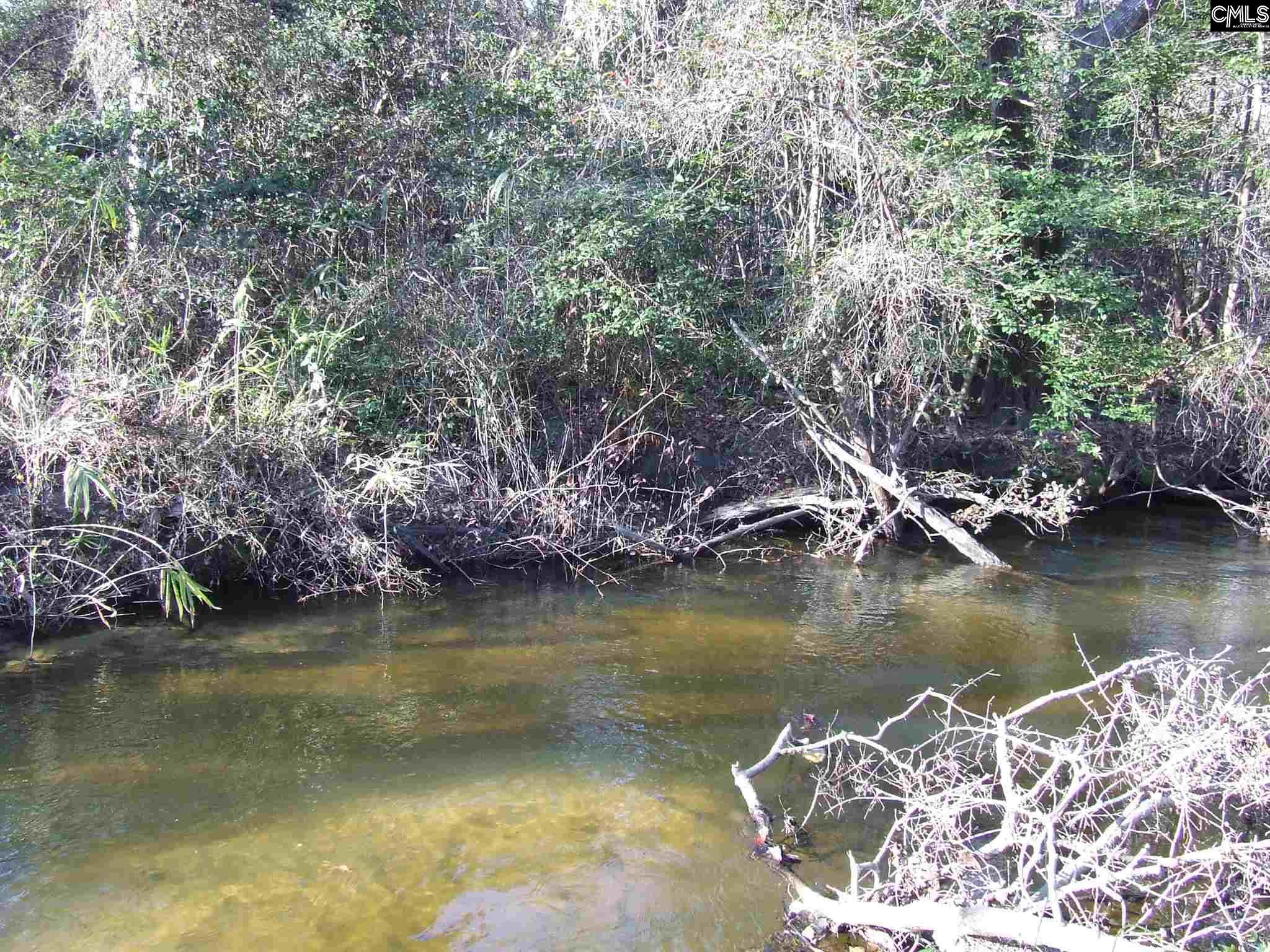 Old Swamp Rd Swansea, SC 29160