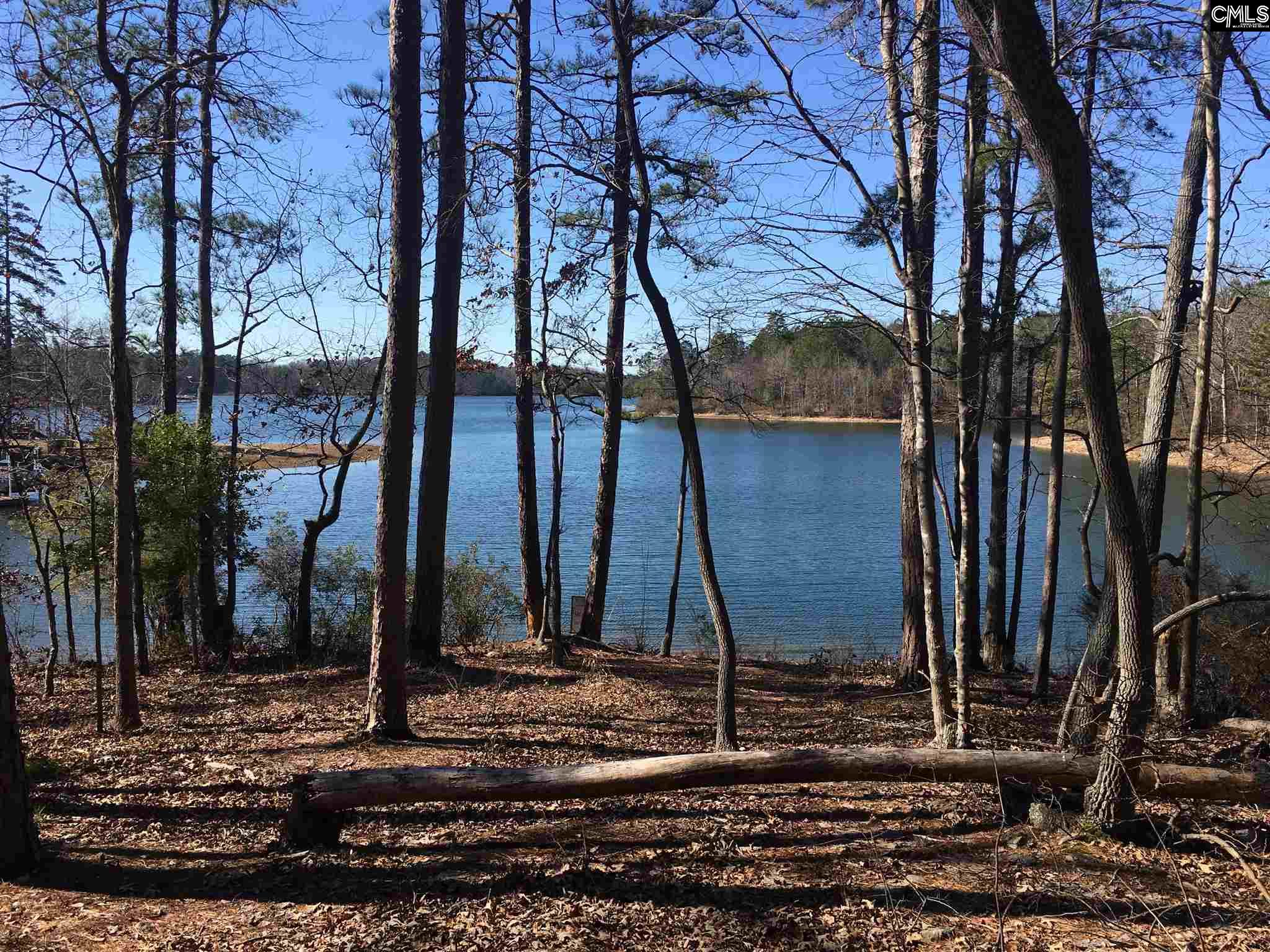 444  Lookover Pointe Chapin, SC 29036