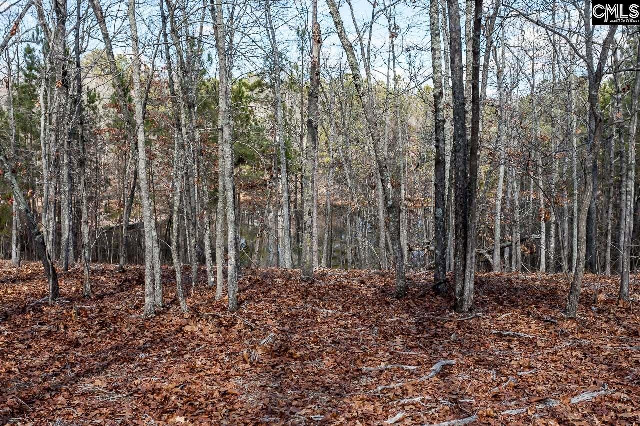 208  Longcreek Plantation #Lot 16 Blythewood, SC 29016