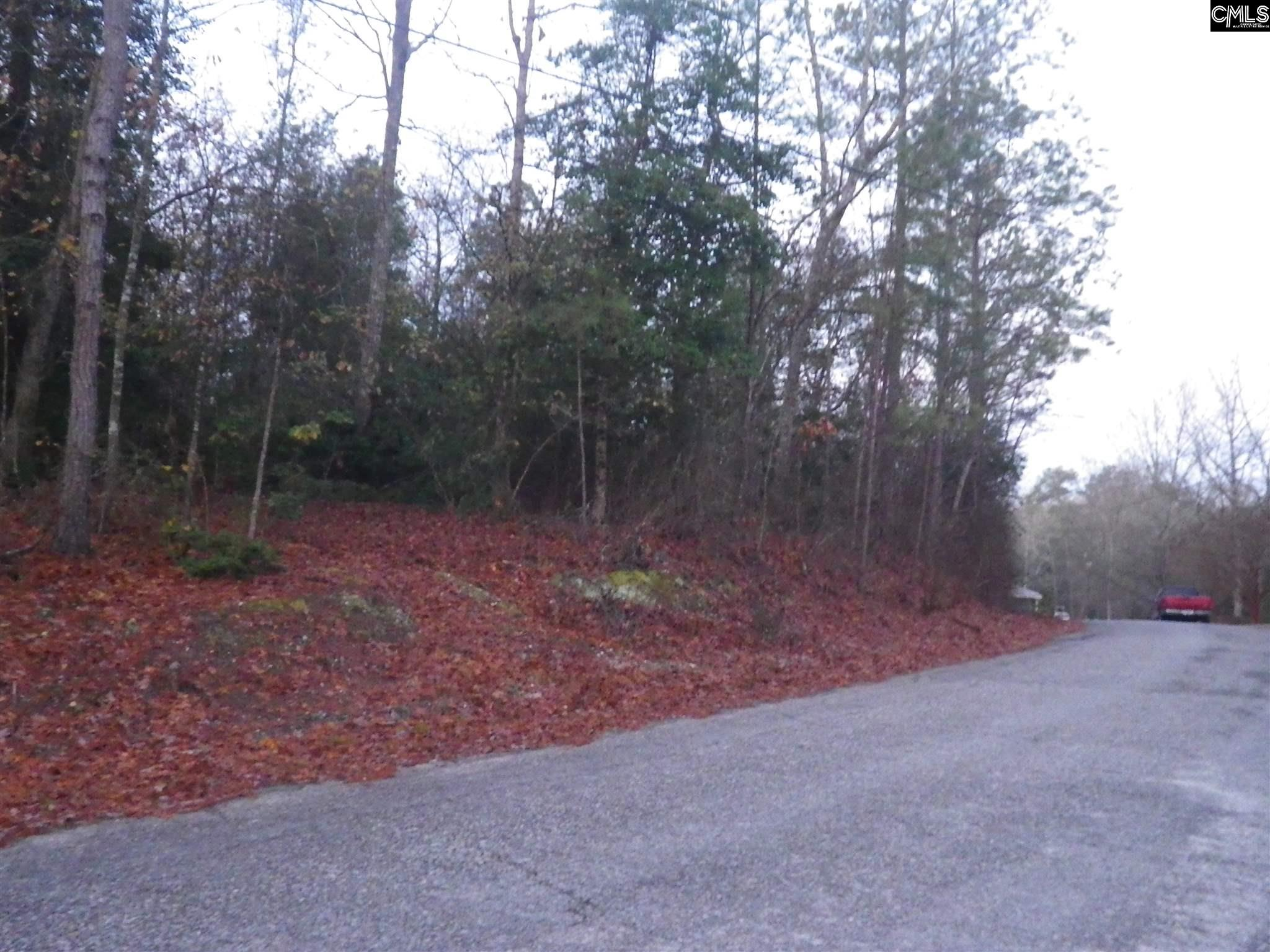 Wessinger #lot 3 Lexington, SC 29072