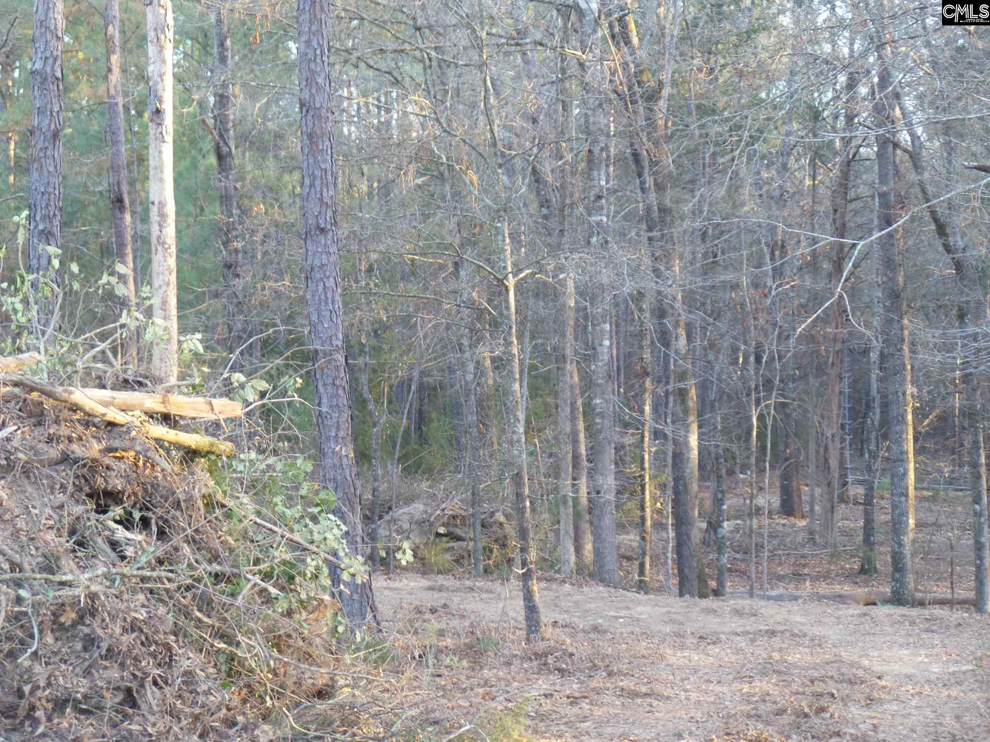 Long Pine #Lot 2 Chapin, SC 29036